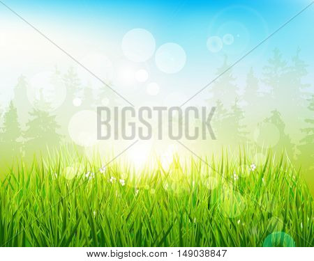 Vector illustration of a beautiful spring landscape with bokeh