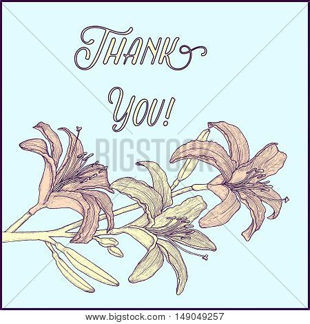 Hand drawn background with lily branch for greeting cards, invitation etc. Vector illustration