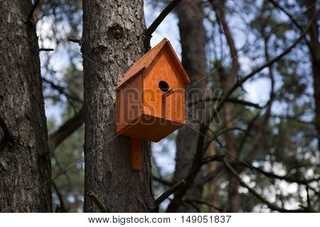 Orange birdhouse in a tree in the forest