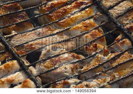 Frying meat on the coals in the backyard closeup