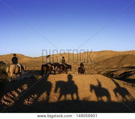 Shadows of riders sitting on horses in the late afternoon sun