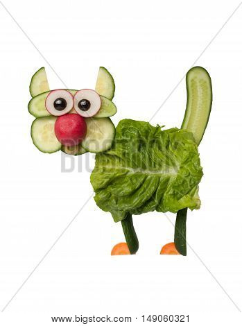 Funny cat made of vegetables on isolated background