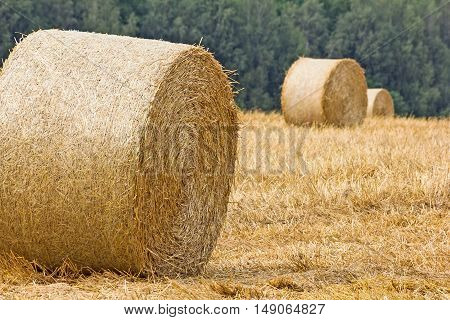 View from farmland full of straw bales at sunset ** Note: Soft Focus at 100% best at smaller sizes