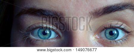 Female eye with long eyelashes close up. Closeup shot of female gray - blue colour eye with day makeup. Beauty female eye with curl long eyelashes