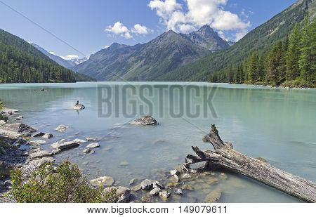 Kucherla lake. Altai Mountains Russia. Sunny summer day.