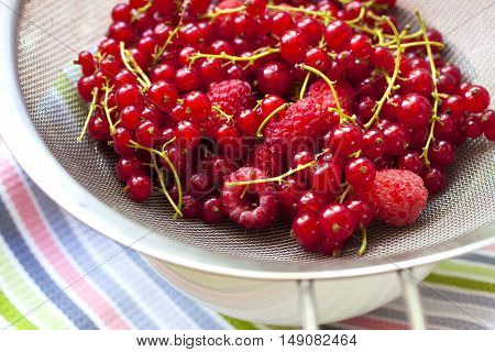 Fresh red currant and raspberries in a metal sieve