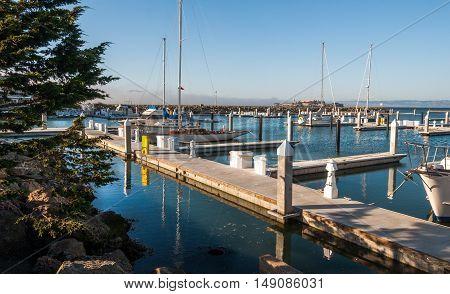 SAN FRANCISCO - sailing boats at Fishermans Wharf - USA