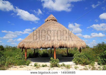 Big Palapa Hut Sunroof In Mexico Jungle