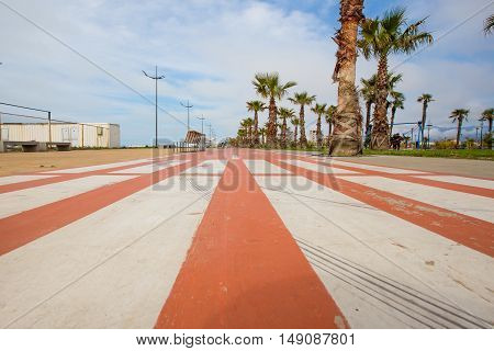 empty track bike on the seafront in Batumi. along the track grows palm trees