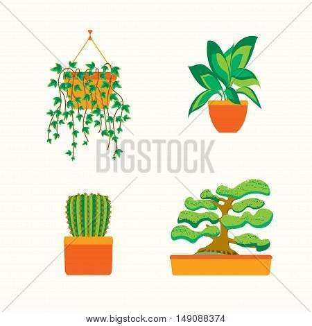Green Plants for Home or Office. Flat Design. Vector illustration