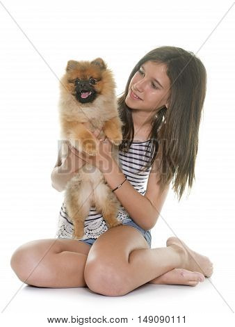 young pomeranian dog and teen in front of white background