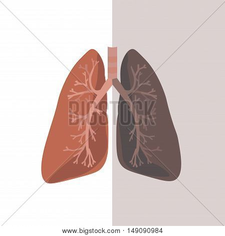 Human Lung Anatomy. Flat Design. Vector illustration