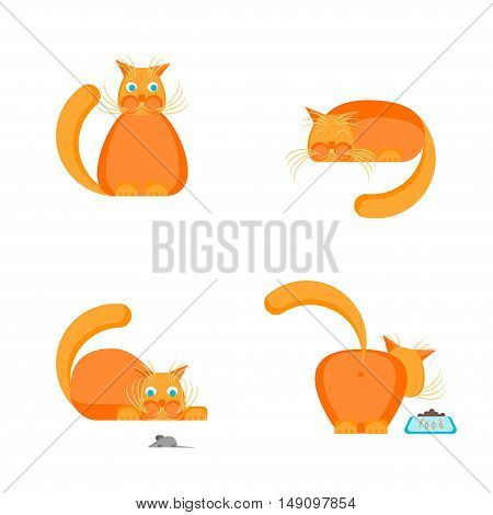 Cute Orange Cat Set. Flat Design Style. Vector illustration