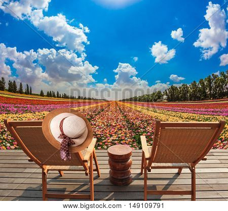 Straw women's hat on a back a sun lounger. Wooden chaise lounges  in the meadow with flowers. Concept of ecological tourism. Rural rest