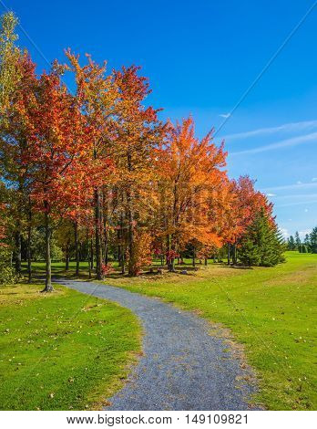 Golden autumn in French Canada. The concept of active tourism. Multi-colored crowns of the trees stand out beautifully against the blue sky