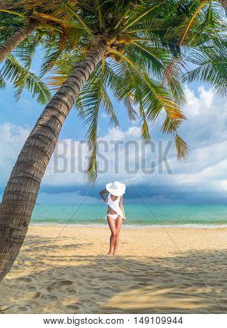 woman under palm tree  sea on backgroud