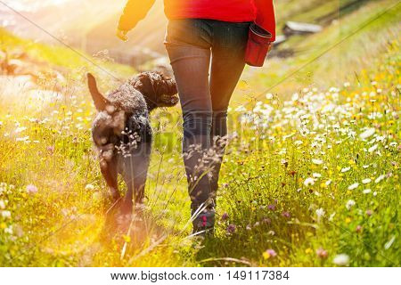 Young woman with her dog walking.