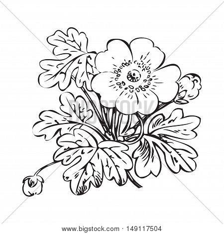 Floral bush retro black on white background vector hand drawn decorative flower vintage contour closeup branch with flower and buds print design