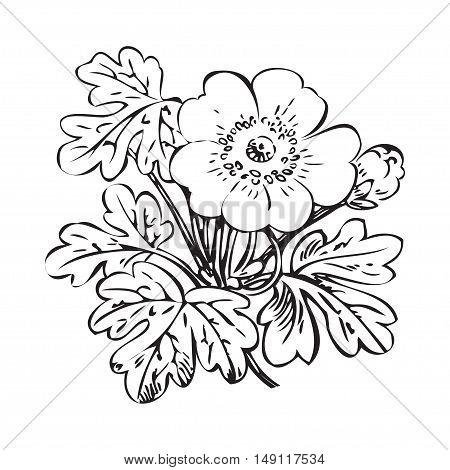 Floral bush retro black on white background vector hand drawn decorative flower vintage contour closeup branch with flower and bud print design