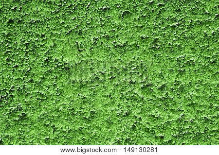 Texture Of Old Grunge Green Asymmetric Decorative Tiles