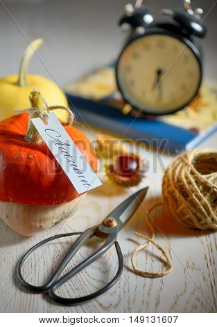 still life with pumpkins scissor and rope