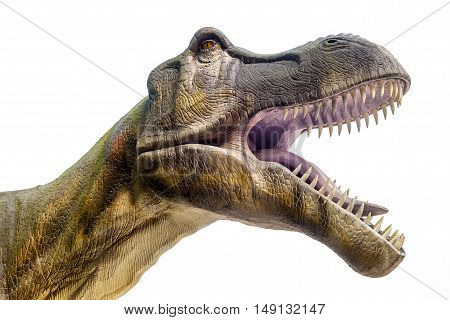 Sculpture of dinosaur ( Tyrannosaurus rex ) in live size with open jaws. Isolated. Clipping Path included.