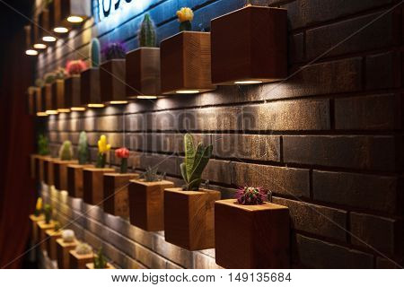 brick decorative wall of the small cacti