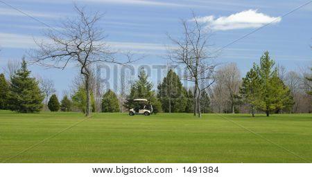 Jogador de golfe no Fairway