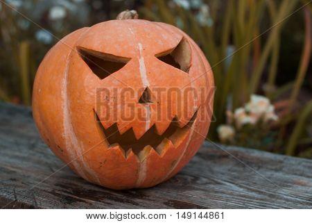 Jack-o ' - lantern outdoors. The Eve Of Halloween. Sunny autumn evening