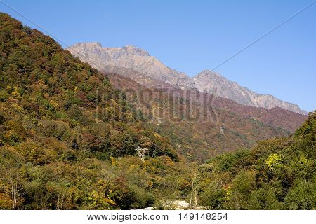 Autumn forest and mount Tanigawa under blue sky