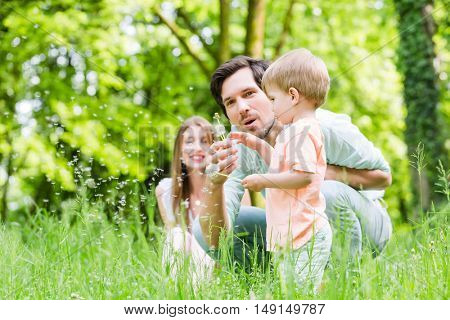 Family with son on meadow blowing dandelion seed