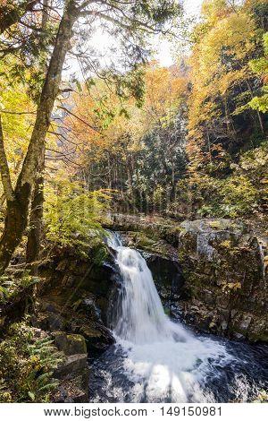 Autumn Yamabiko waterfall surrounded by rocks in Minakami, Gunmma
