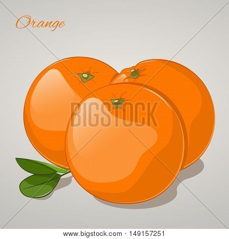 Cartoon sweet orange on grey background. Vector Illustration. Fruits and vegetables collection.