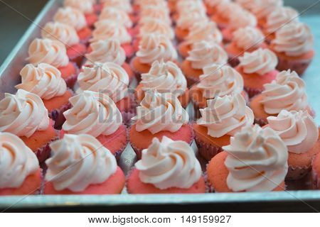 Chef is decorating cupcakes for a party
