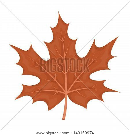 Maple leaf icon in cartoon style isolated on white background. Canadian Thanksgiving Day symbol vector illustration.