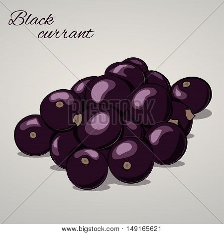 Cartoon sweet black currant isolated on grey background, vector illustration. Fruits and vegetables collection.