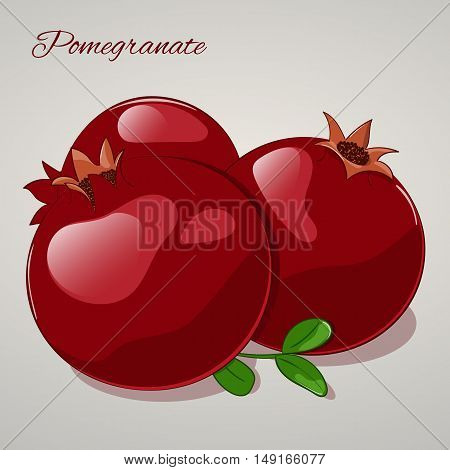 Cartoon sweet pomegranate on grey background. Vector Illustration. Fruits and vegetables collection.