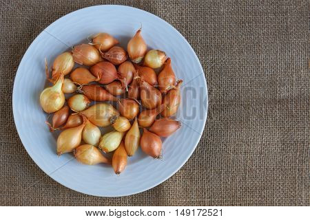 Very small white onions on a plate