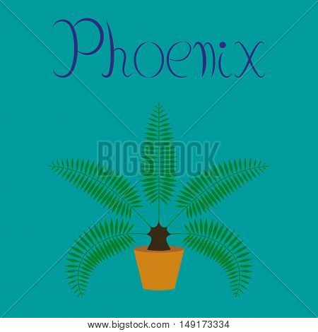 flat illustration on stylish background natural phoenix