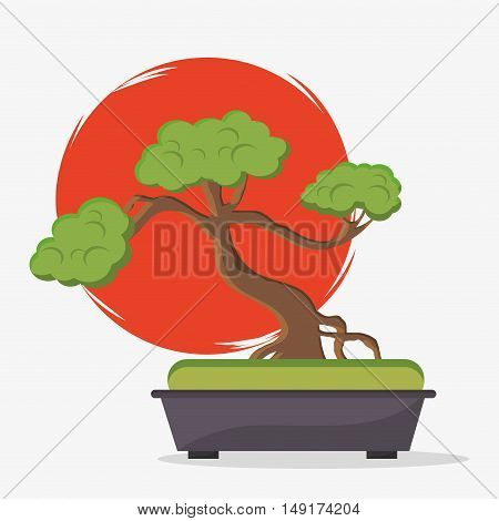 Sun and bonsai tree icon. Japan and asian culture theme. Colorful design. Vector illustration