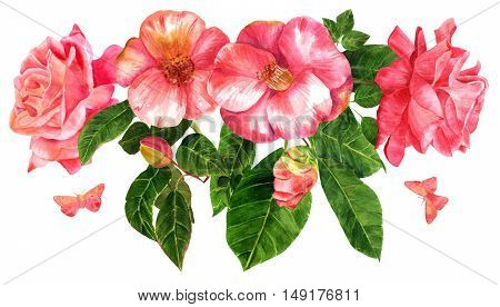 A bouquet of tender pink roses and camellias, flowers and buds, with green leaves and butterflies, hand painted in the style of vintage botanical art, isolated on white