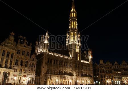 Brussels' Town Hall At Night, Belgium