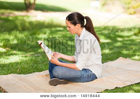 Woman Reading In The Park