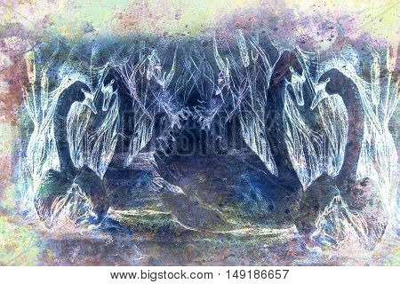 decorative style drawing of swans swimming at pond with reeds, monochromatic.