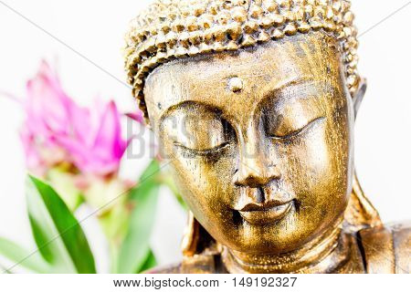 golden buddha with pink flowers and white background