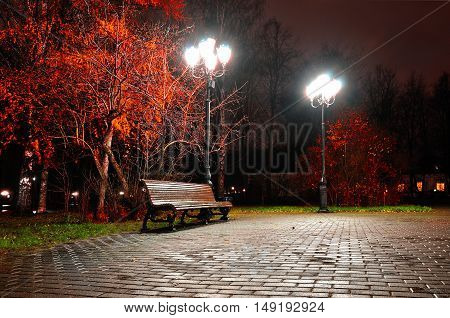 Autumn night city. Night autumn landscape of night autumn park. Autumn night with wooden bench under red autumn trees-night landscape. Night city view of autumn park. Colorful autumn night landscape