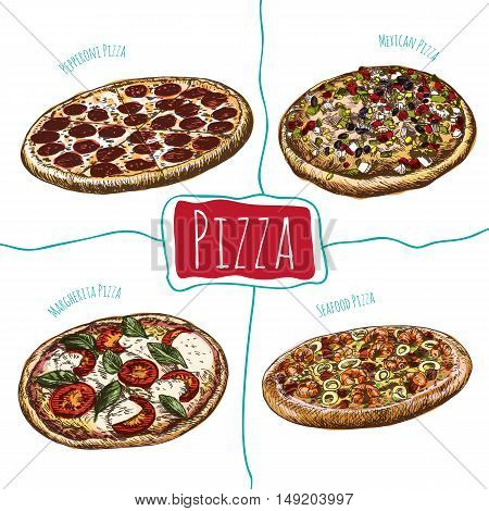 Pepperoni, Margherita, Mexican and Seafood pizzas illustration. Vector colorful illustration of pizzas