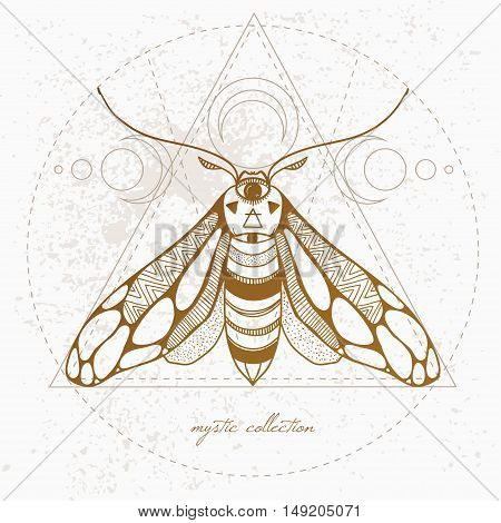 vintage butterfly, vector illustration vector hand drawn moth with ornamental wings and mystic signs