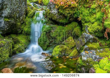 Small waterfall and mossy rocks in autumn
