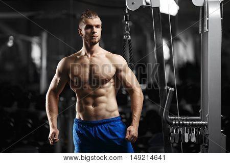 Bodybuilder posing in the gym. Bodybuilder man in the gym. Young fitness man posing for the camera in the gym